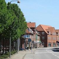 Ølgod By