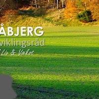 Blåbjerg Udviklingsråd